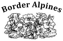 Border Alpines logo